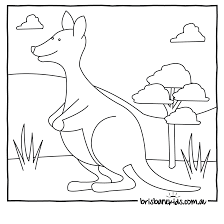 Small Picture Australian Animals Colouring Pages Brisbane Kids