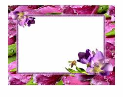 png transpa images free