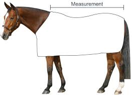 rug measurement guide