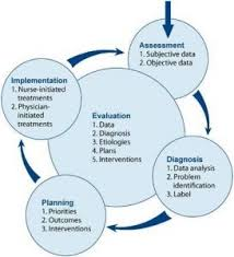 Adpie Charting Adpie Where To Find Evidenced Based Nursing Intervention