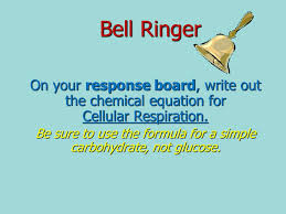 2 bell ringer on your response board write out the chemical equation for cellular respiration be sure to use the formula for a simple carbohydrate