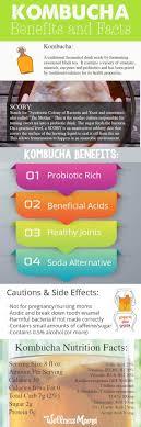 kombucha benefits and facts infographic