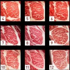 Japanese Beef Grading Chart Mikes Specialty Services