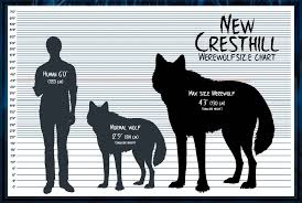 Wolf Vs Dog Size Chart Nch Werewolf Size Chart Closed By Summonwolf In 2019