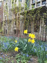 The Kitchen Gardener Colors Of Spring The Kitchen Gardener