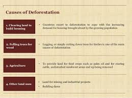 deforestation causes effects and solutions causes