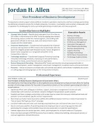 Vice President Business Development Resume Sample Resumes