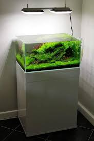 would love to build an aquarium like this someday