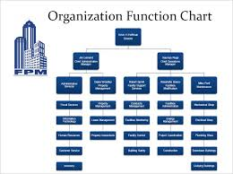 Best Photos Of Functional Organizational Structure Functional
