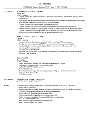 Sql Resume Example SQL Analyst Resume Samples Velvet Jobs 33