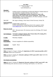 What To Put In A Resume Simple What To Put In A Resume Tommybanks