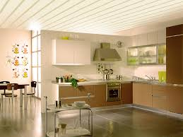 Ceiling For Kitchen Design Archives Page 18 Of 30 House Decor Picture
