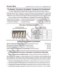 Executive Resume Sample | Vice President Executive Resume | Vp ...