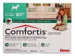comfortis for dogs81