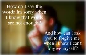 Apology Quotes Enchanting 448 Apology Quotes 48 QuotePrism