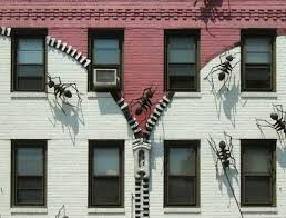 Resultado de imagen de edificios de hormigas imagenes