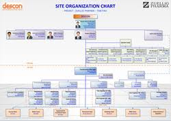 Organization Chart Descon Zuellig Pharma