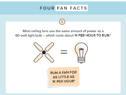 four fan facts fact one
