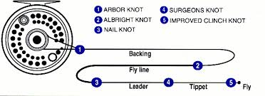 Fly Line Leader Size Chart Fly Fishing Knots