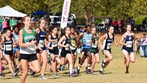 Find Your Athlete Profile: Every XC Girls Returnee In Georgia Ranked!