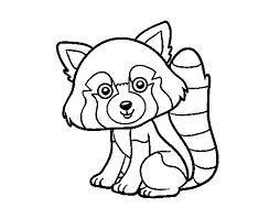 Animali Da Stampare E Colorare Gratis Disegno Di Panda Rosso Da