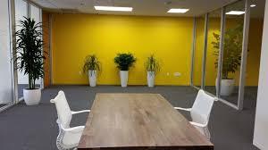 software company office. Interior Plants - Improve Office Space Software Company
