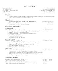Objective In Resume Sample Amazing Professional Objectives For Resumes Resume Objective Statement