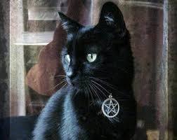 <b>Gothic cat</b> collar | Etsy