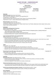 Sample Of Social Worker Resume Mesmerizing Social Worker Objective Resume Examples Work Objectives For In