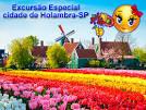 imagem de Holambra+S%C3%A3o+Paulo n-16