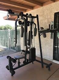 Golds Home Gym Workout Bench Fitness Weight Training Arms