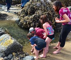 A Diy To Do List For Oregons Cannon Beach The Seattle Times