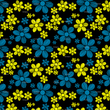 Yellow Cerulean Blue Black Background Color Summer Daisy