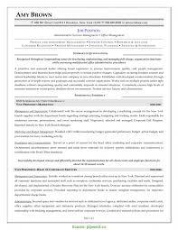 Vp Marketing Resume Simple Administrative Assistant Resume Skills Entry Level 6