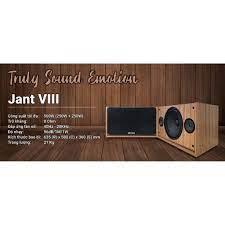 Loa karaoke gia đình Arirang Jant VIII chính hãng -Bass 25cm giá cạnh tranh