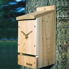 how to build bat house tos diy plans missouri free wood pdf easy bat house plans pdf