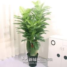 decorative plants for office. Get Quotations · Simulation Potted Bonsai Living Room Office Decoration Artificial Plants Fake Tree 1.8 Meters Three Treasure Pineapple Decorative For A