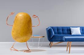 תוצאת תמונה עבור couch potato