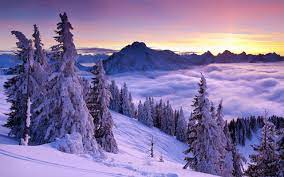 Purple Winter Sunset Wallpaper - Photo ...