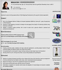 resume design for freshers  resume format for job great examples