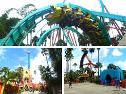 busch gardens rides with colorful roller coasters
