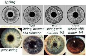 Iris Color Chart 14