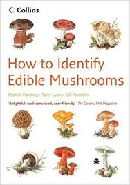 How To Identify Edible Mushrooms Amazon Co Uk Patrick
