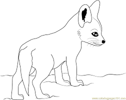 Small Picture Cute Baby Fox Coloring Page Free Fox Coloring Pages