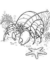 Whether they kid try to color into the lines or not, surely coloring brings a creative spirit the adults coloring pages, as well as the kids coloring pages are beneficial for both parties as these free coloring. 10 Watch Me Grow Hungry Caterpillar Ideas Hungry Caterpillar Caterpillar Hungry Caterpillar Activities