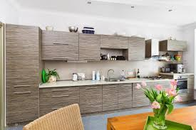 Bamboo Cabinets Kitchen Kitchen Bamboo Kitchen Cabinets Together Magnificent Kitchen