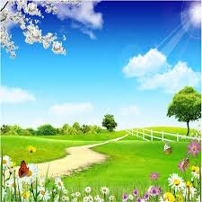 summer outdoors wallpaper. Simple Wallpaper Online Shop Beibehang Large Custom Wallpaper Outdoor Scenery Blue Sky And  White Clouds Green Meadow Road Peach Butterfly Lines  Aliexpress Mobile In Summer Outdoors Wallpaper