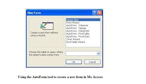 How To Use The Autoform Wizard To Create A New Form In Ms