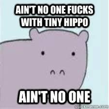 Ain't no one fucks with tiny hippo Ain't no one - Misc - quickmeme via Relatably.com