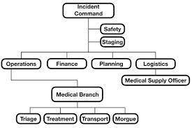 Figure Organizational Chart For Incident Command